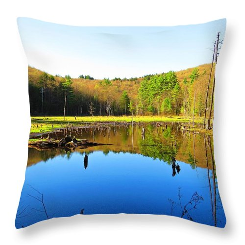 Wetlands Throw Pillow featuring the photograph Wetland Morning Calm by MTBobbins Photography
