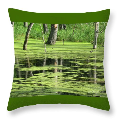 Landscape Throw Pillow featuring the photograph Wetland Reflection by Ann Horn