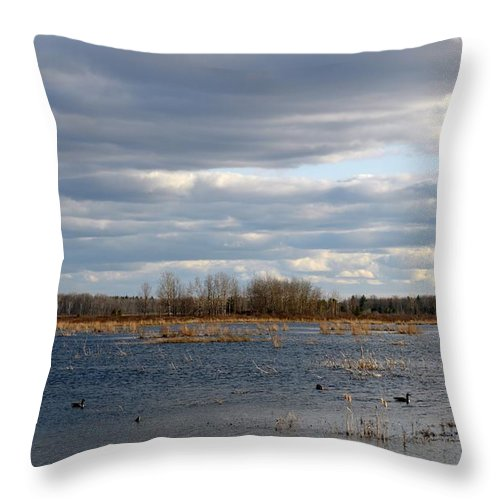 Houghton Lake Throw Pillow featuring the photograph Wetlands by Linda Kerkau