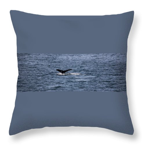 Landscape Throw Pillow featuring the photograph Whale Tail by Dillen Erb