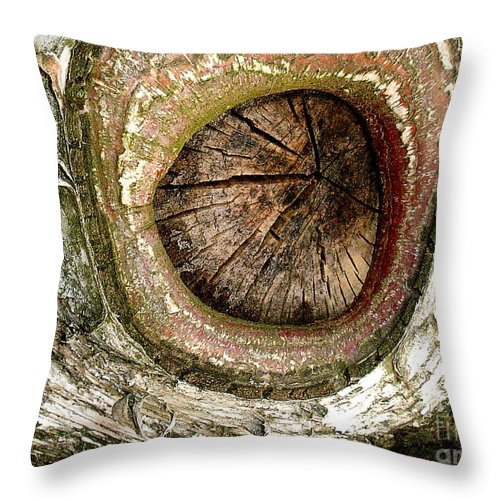 Birch Tree Throw Pillow featuring the photograph What A Birch by Valerie Fuqua