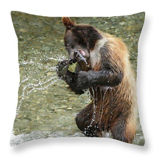 Nature Throw Pillow featuring the photograph What A Show Little Bear by Ursula Salzmann
