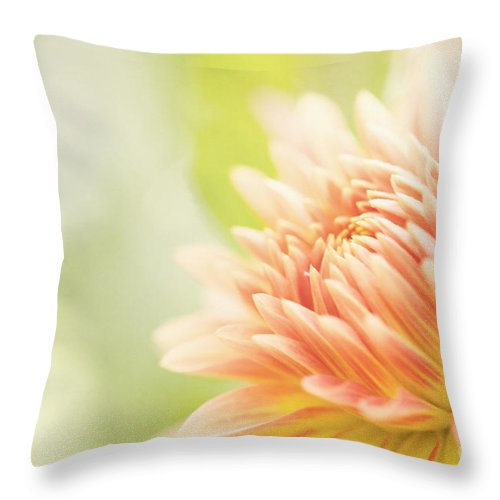Dahlia Throw Pillow featuring the photograph When Summer Dreams by Beve Brown-Clark Photography