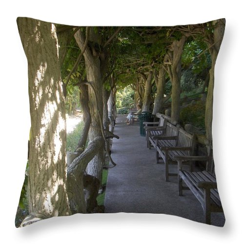 Throw Pillow featuring the photograph Where Are You by M Michele Herrick