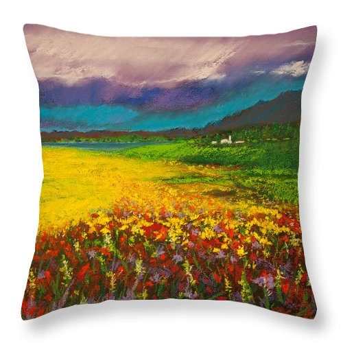 David Patterson Throw Pillow featuring the painting Where Birds Fly by David Patterson