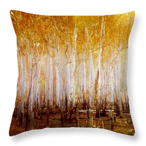 Landscapes Throw Pillow featuring the photograph Where The Sun Shines by Holly Kempe