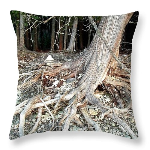 Where The Wild Things Are Throw Pillow featuring the photograph Where The Wild Things Are by Deb Schense