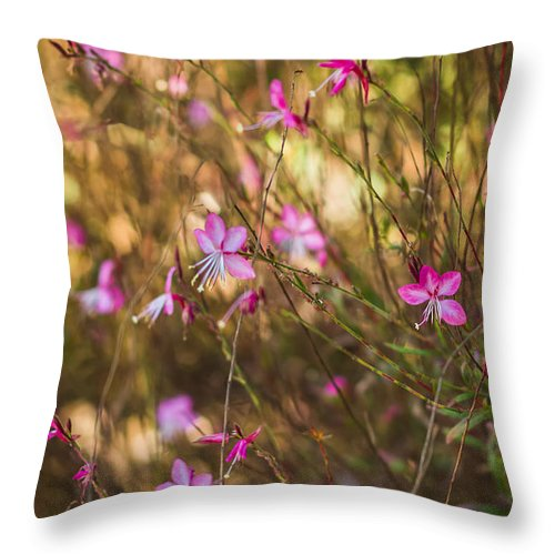 Florida Throw Pillow featuring the photograph Whirling Butterfly Bush by Jane Luxton