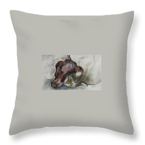 Dog Throw Pillow featuring the drawing Whisker To Whisker by Cori Solomon