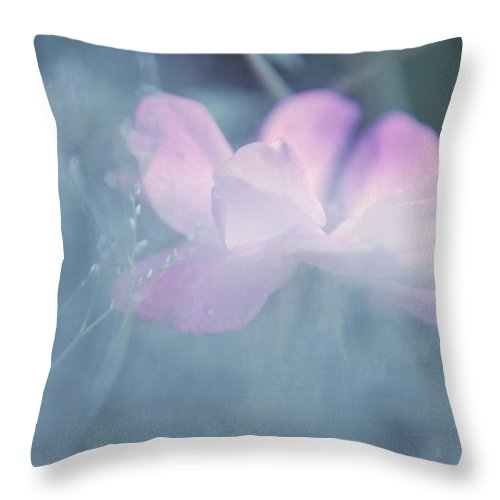 Pink Roses Throw Pillow featuring the photograph Whispering Wild Rose by Jenny Rainbow