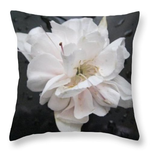One White Fuschia Flower Throw Pillow featuring the photograph White And Black Art by Sandra Maddox