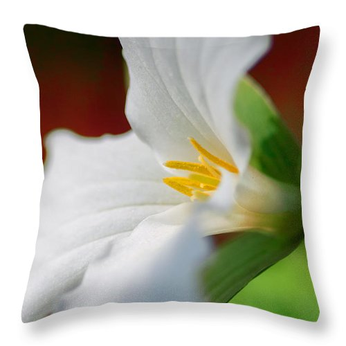Trillium Throw Pillow featuring the photograph White Beauty by Garvin Hunter
