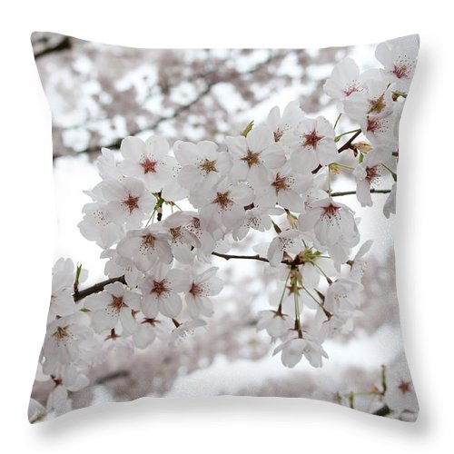 Spring Throw Pillow featuring the photograph White Beauty by Gunay Turgut