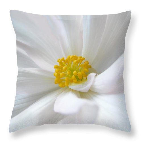 Begonia Throw Pillow featuring the photograph White Begonia Flower Macro by Jennie Marie Schell