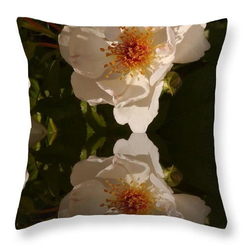 Briar Rose Throw Pillow featuring the photograph White Briar Rose Reflection by Christiane Schulze Art And Photography