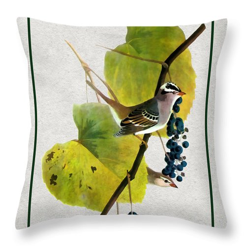 Antique Vintage Traditional Bird Birds Realistic Formal Animal Wild Flying Avian Feathers  Throw Pillow featuring the painting White Crowned Finch Vertical by Elaine Plesser