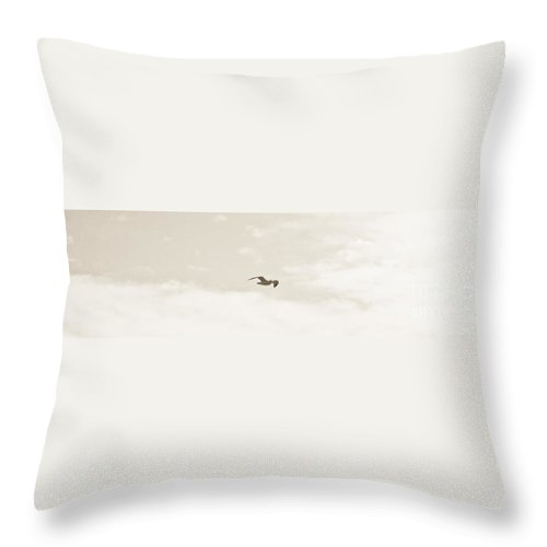 Sky Throw Pillow featuring the photograph White Flight by David Fabian