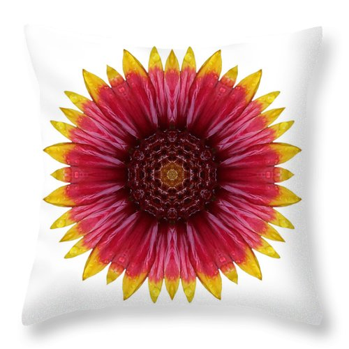 Flower Throw Pillow featuring the photograph Galliardia Arizona Sun I Flower Mandala White by David J Bookbinder