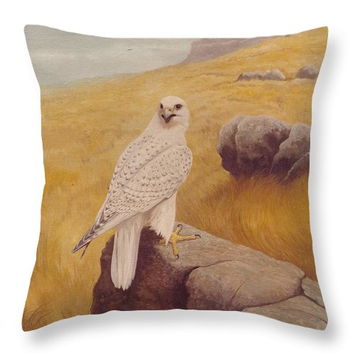 White Gyrfalcon Throw Pillow featuring the painting White Gyrfalcon by Alan Suliber