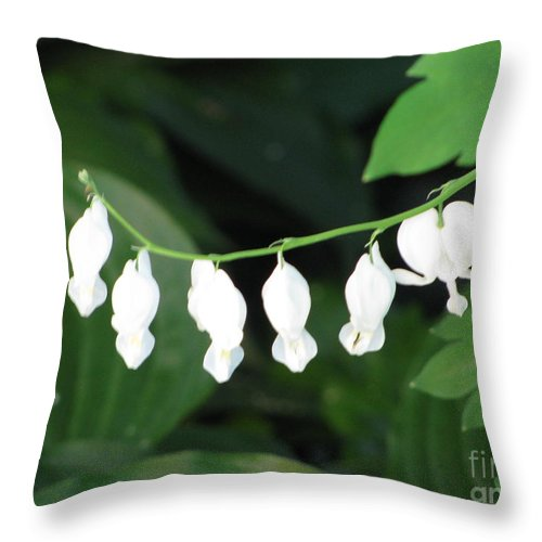 Flower Throw Pillow featuring the photograph White Hears by Nancie Johnson