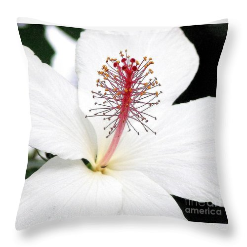 White Hibiscus Flower Throw Pillow featuring the photograph White Hibiscus by Mary Deal