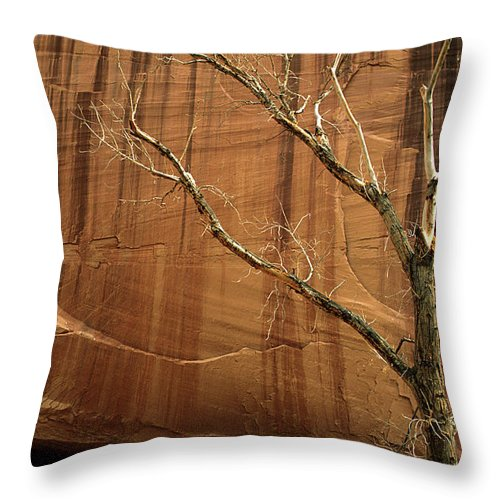 Canyon De Chelly Throw Pillow featuring the photograph White House Ruin by Bob Christopher