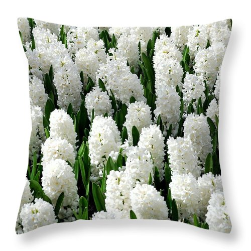 Flower Throw Pillow featuring the photograph White Hyacinths by Glenn Aker