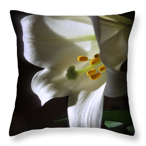 White Throw Pillow featuring the photograph White Lily by Kay Novy