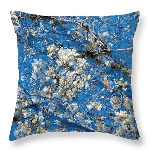 Magnolia Throw Pillow featuring the photograph White Magnolia by Catherine Lau
