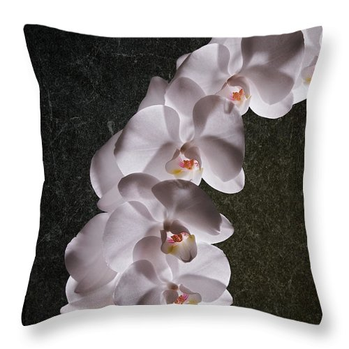 Arrangement Throw Pillow featuring the photograph White Orchid Still Life by Tom Mc Nemar