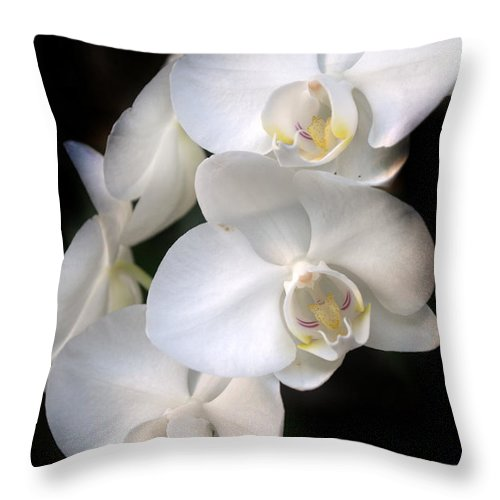 Flower Throw Pillow featuring the photograph White Orchids by Nathan Abbott