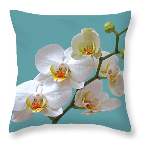 Soft White Orchid Throw Pillow featuring the photograph White Orchids On Ocean Blue by Gill Billington