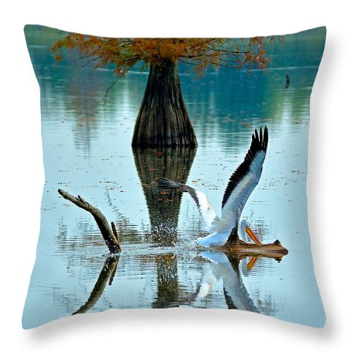 Throw Pillow featuring the photograph White Pelican by Kevin Pugh