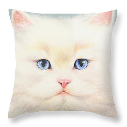 Andrew Farley Throw Pillow featuring the photograph White Persian by MGL Meiklejohn Graphics Licensing