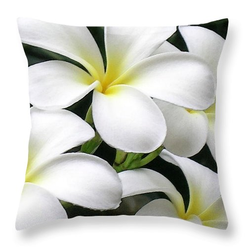 Hawaii Iphone Cases Throw Pillow featuring the photograph White Plumeria by James Temple
