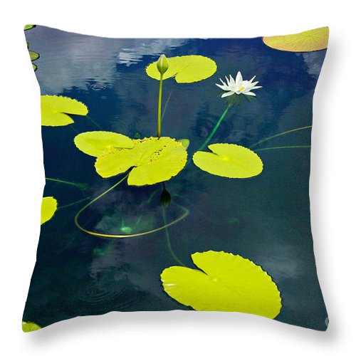 White Throw Pillow featuring the photograph White Pond Lily by Gary Richards