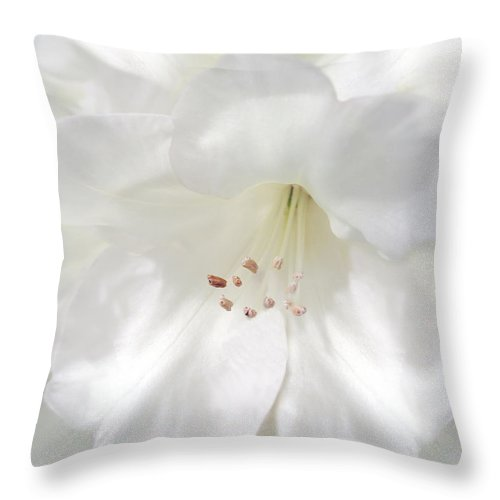 Rhododendron Throw Pillow featuring the photograph White Rhododendron Flowers by Jennie Marie Schell
