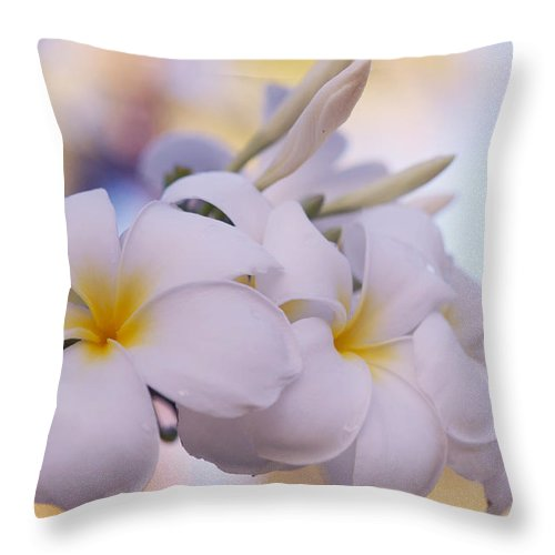 Jenny Rainbow Fine Art Photography Throw Pillow featuring the photograph White Snow Frangipani Flowers by Jenny Rainbow