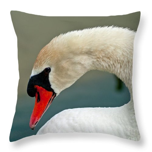 White Throw Pillow featuring the photograph White Swan Profile by Stephen Whalen