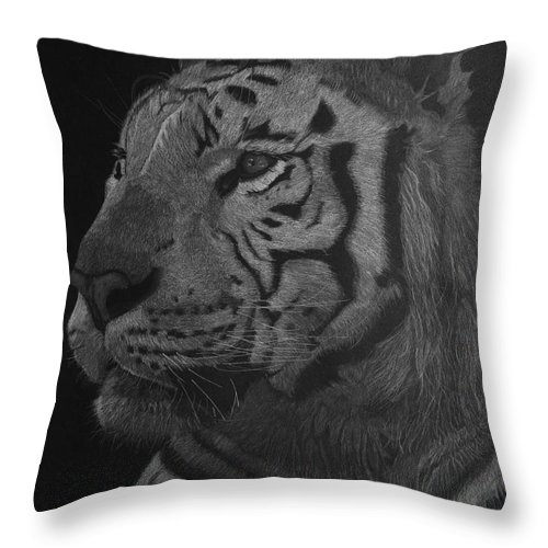 Tiger Throw Pillow featuring the drawing White Tiger At Night by Byron Moss