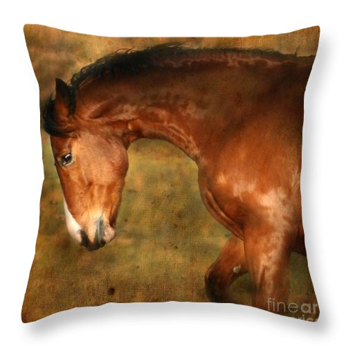 Horse Throw Pillow featuring the photograph Wild by Angel Ciesniarska
