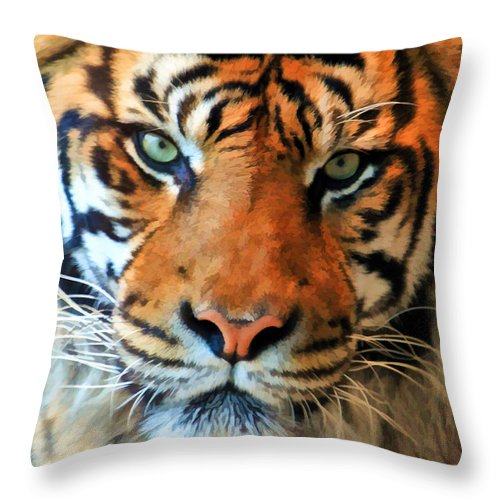 Tiger Throw Pillow featuring the photograph Wild Cat by Athena Mckinzie