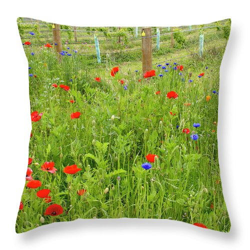 Scenics Throw Pillow featuring the photograph Wild Flowers Along The Edge Of A by Lazingbee