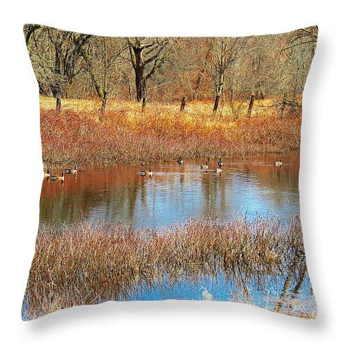 Canadian Geese Throw Pillow featuring the photograph Wild Geese On The Farm by MTBobbins Photography