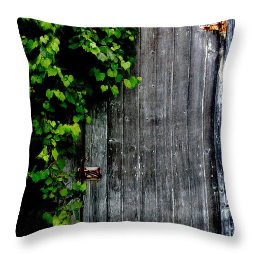 Barn Throw Pillow featuring the photograph Wild Grape Vine Door by Michael Arend