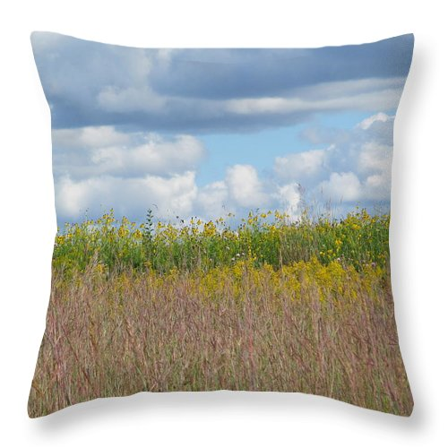 Park Throw Pillow featuring the photograph Wild Grass Two by Tina M Wenger