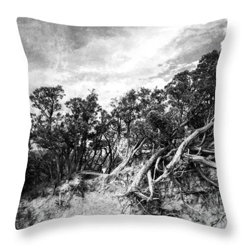 Vancouver Throw Pillow featuring the photograph Wild Misses Me by The Artist Project