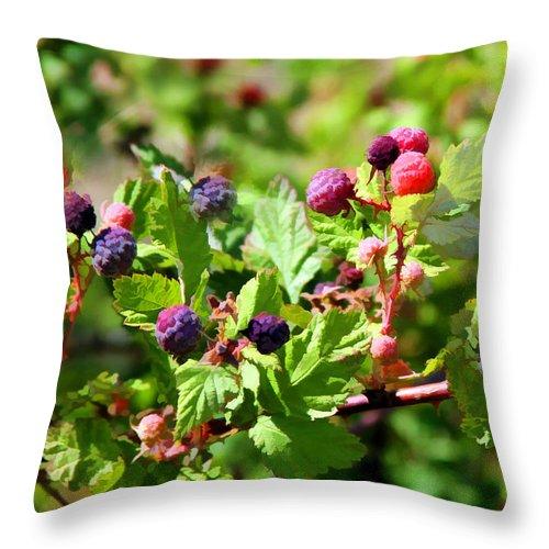 Wild Blackberries On The Mogollon Rim In Northeastern Arizona. Throw Pillow featuring the digital art Wild Mountain Berries by Carolyn Krek