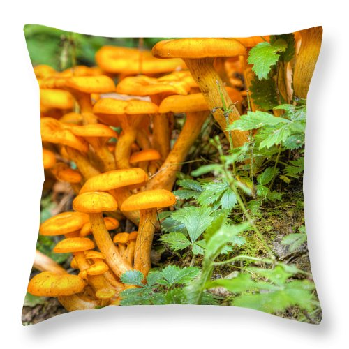 Mushrooms Throw Pillow featuring the photograph Wild Mushrooms by Alexey Stiop