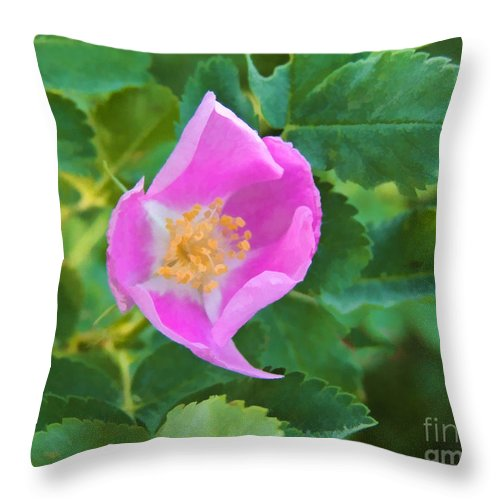 Rose Throw Pillow featuring the digital art Wild Rose by L J Oakes